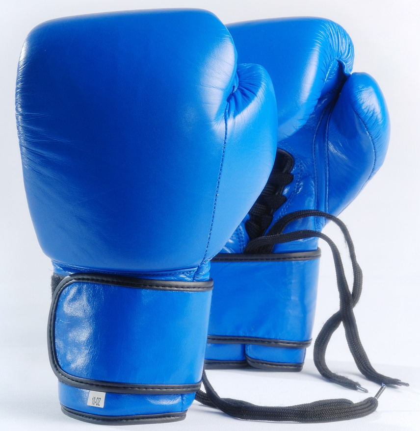 Economic Knockout: Boxing Strategies SME Survival